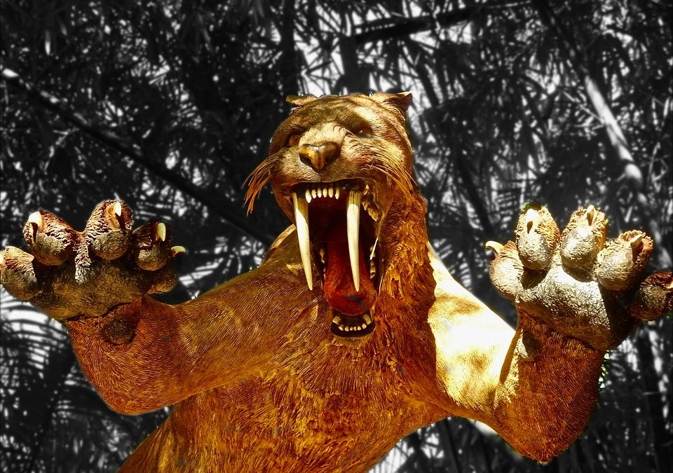 The Blame Game – Saber Tooth Tiger Edition